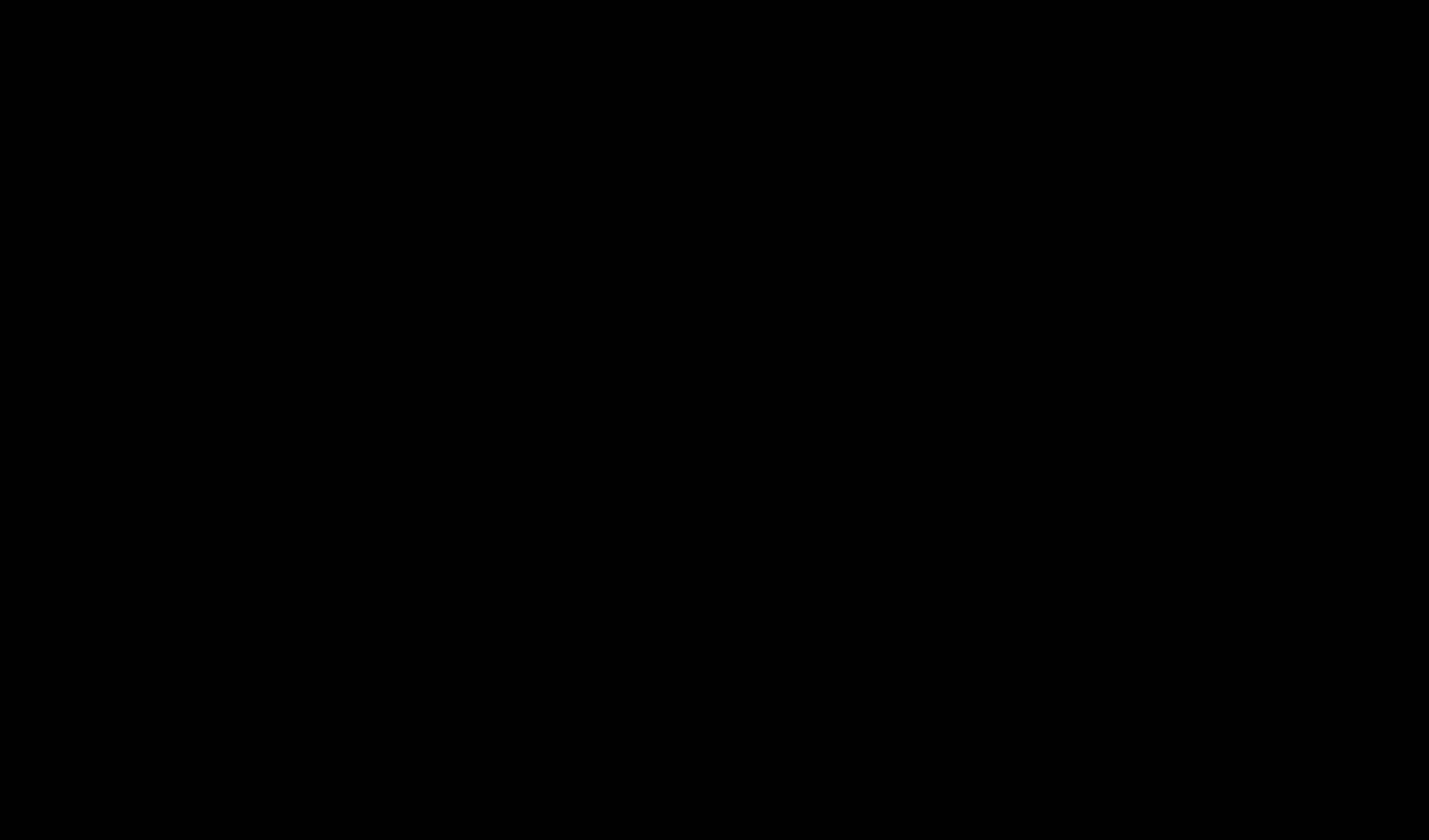 Family unit in silhouette